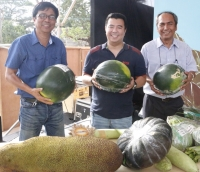 Kannawidan's Pinaka Contest showcases Best Agricultural Assets in Ilocos Sur
